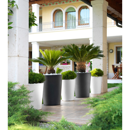 Dekorativna posoda MonteCarlo 65cm