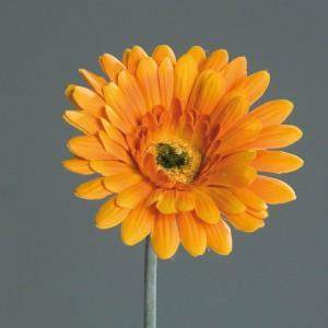 umetne rože umetna roža gerbera oranžna