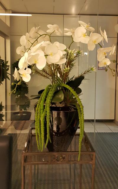 cvetlični aranžma bele orhideje