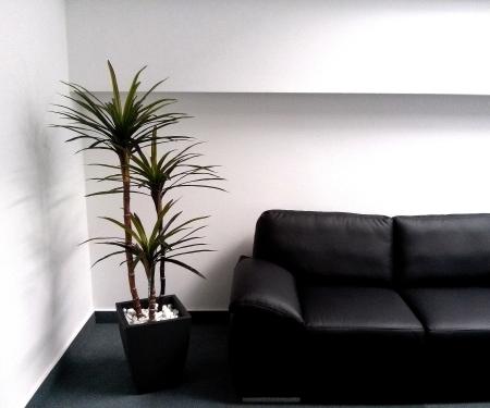 Dracena umetna palma