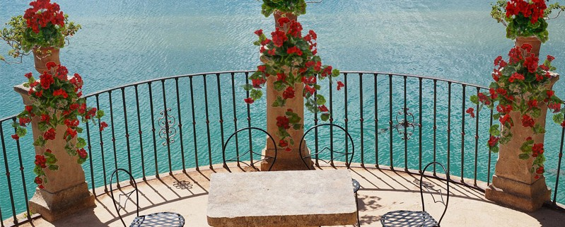 balkonsko cvetje umetne geranije bršljanke pelargonije