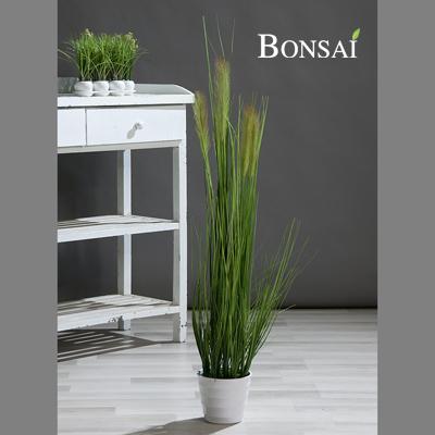umetne okrasne trave Perjanka v lončku