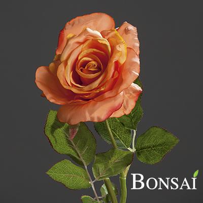 Vrtnica bogota oranzna 40 cm