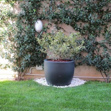 cvetlični lonec Rome antracit PVC
