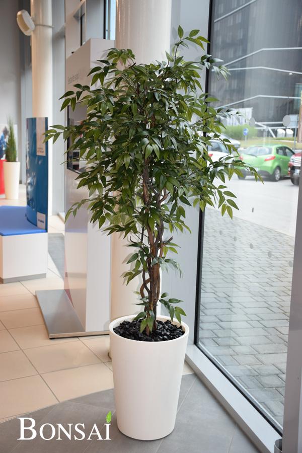 umetna drevesa Fikus umetno drevje Bonsai umetne rože