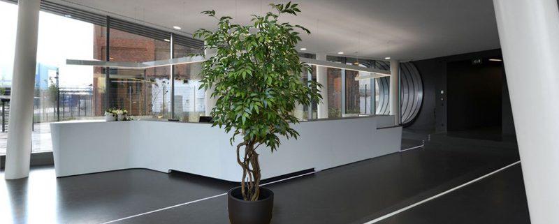 umetna drevesa umetno drevje notranja oprema poslovni prostor