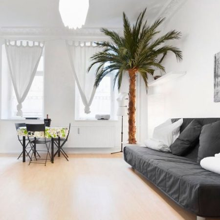 umetne palme - stabilizirana palma Bonsai