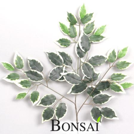 umetne veje Ficus umetna veja Fikus veja - umetna veja - okrasna veja