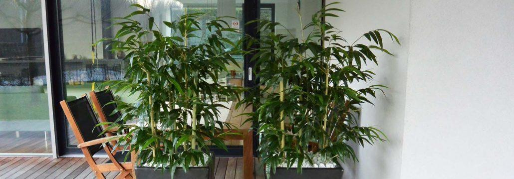 umetni bambus umjetno ccvijeće umjetne biljke ukrasne tegle