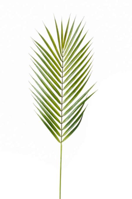 Umetna palmina veja 75cm