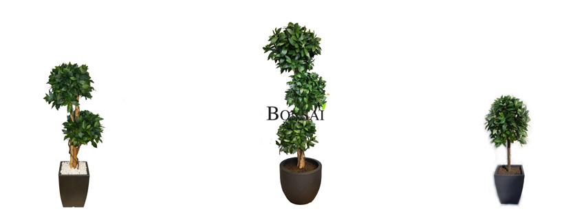umetni lovor - umetne rastline