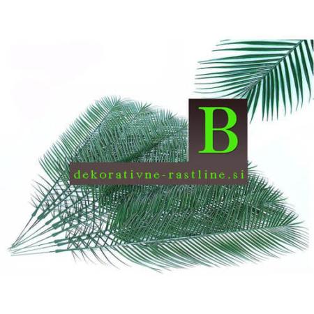 Plastična palmina veja 100 cm - veja - palmina veja - okrasna veja - umetna veja - palmina veja