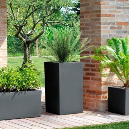 Rastline z UV zaščito