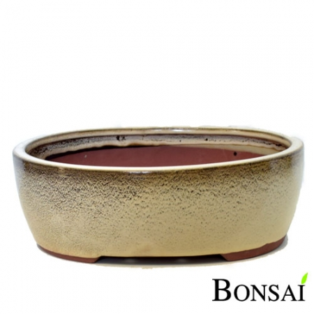 Bonsai posoda velikost XL