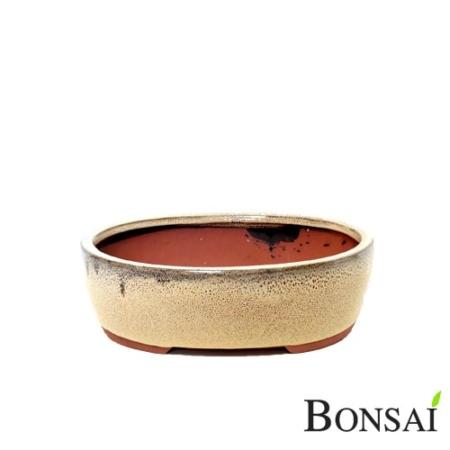 Bonsai glazirana posoda L