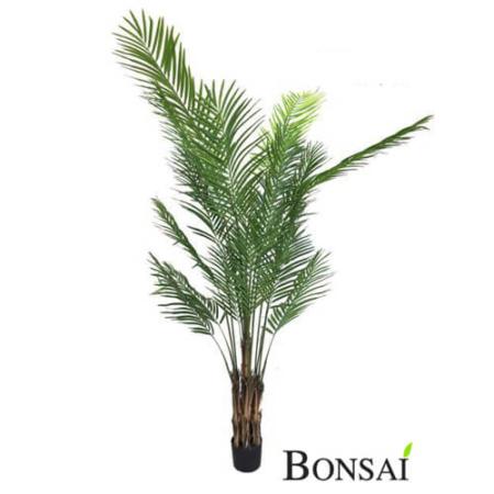 Kencija palma 250 cm - umetne palme - okrasna palma - palma kencija - velika palma
