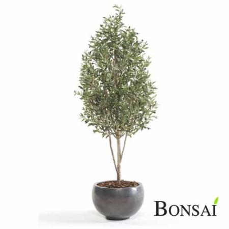Umetna oljka 170 cm - okrasna oljka - umetna oljka - oljka drevo