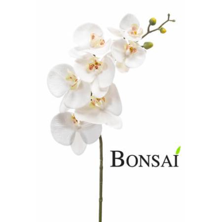 Umetna orhideja bela 82 cm - umetna orhideja - okrasna orhideja - bela orhideja - veja orhideje