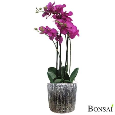 Orhideja roza v lončku 60 cm