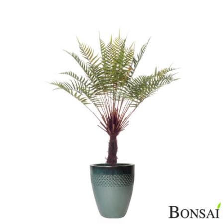 Umetni praprot v lončku 105 cm - praprot - praprot rastlina - umetni praprot - praprot drevo - praprot na steblu