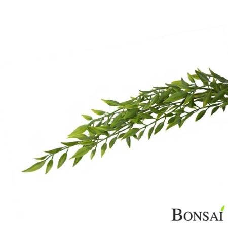 Bambus plezalka 80 cm z UV zaščito