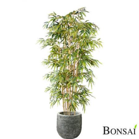 Bambus naravna stebla 210 cm