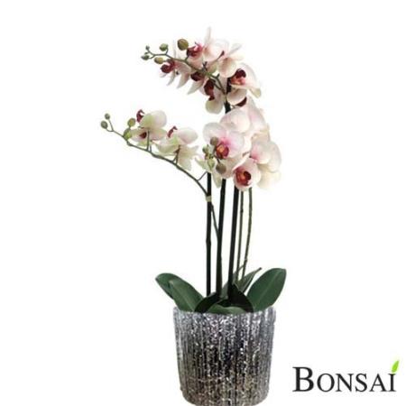 Aranžma orhideje real touch - orhideja - roza orhideja - umetna orhideja