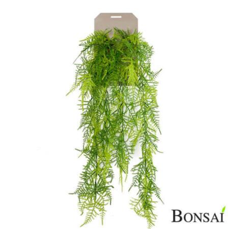 umetni asparagus - umetna plezalka