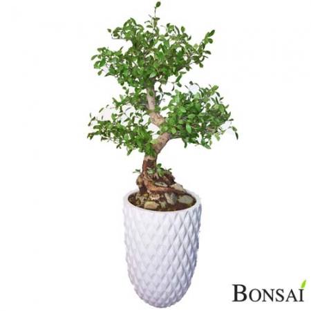 Umetni Bonsai Ligustur 100 cm