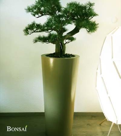 umetni bonsai bor