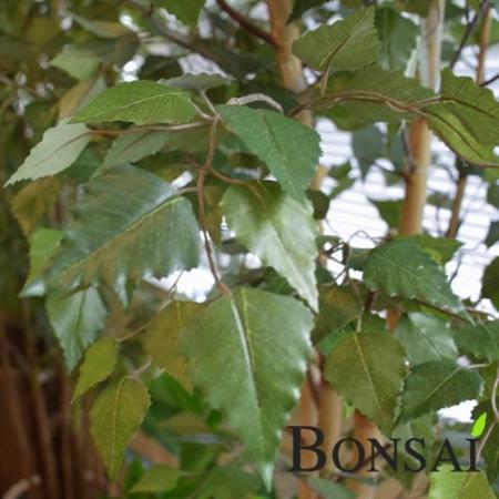 Umetno drevo Fikus 190 cm