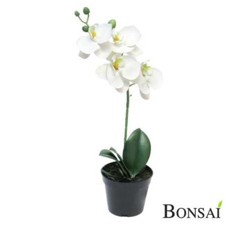 Aranžma orhideja 35 cm RT