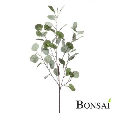 Evkaliptus veja 88 cm sivo- zelena