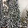 Umetna jelka Wonderland - umjetne jelke umjetni bori