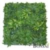 Zelena stena 100 x 100 cm z rastlinami