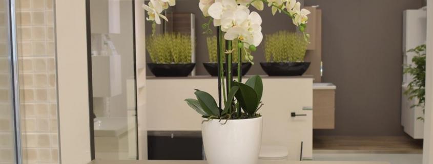 umetne orhideje - bela orhideja