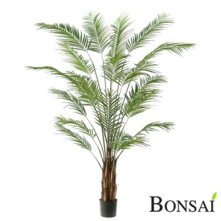 Umetna palma Areka 240cm