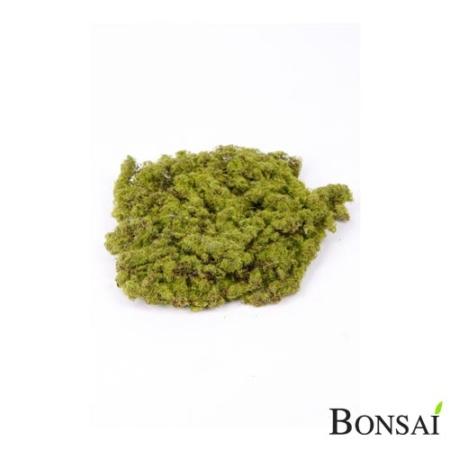 Umetni mah premer 20 cm zeleno rjav