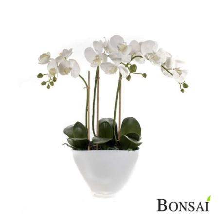 Orhideja 50 cm v beli vazi