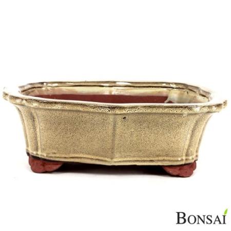 Bonsai posoda 30x24x9.5 bež-temnorjava