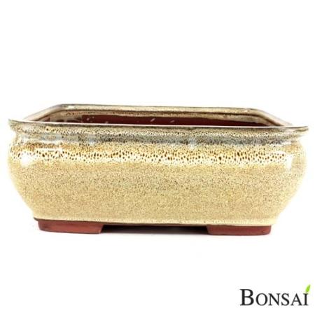 Bonsai posoda 31x27x12 bež-rjava
