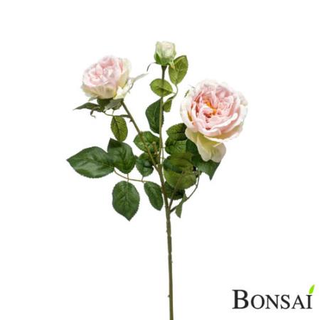 Vrtnica svetlo roza 60 cm