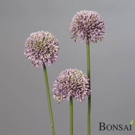 Alium lila 46 cm