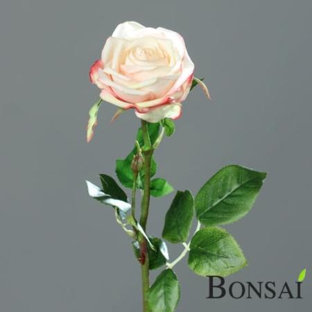 Vrtnica 66 cm Grace Peach