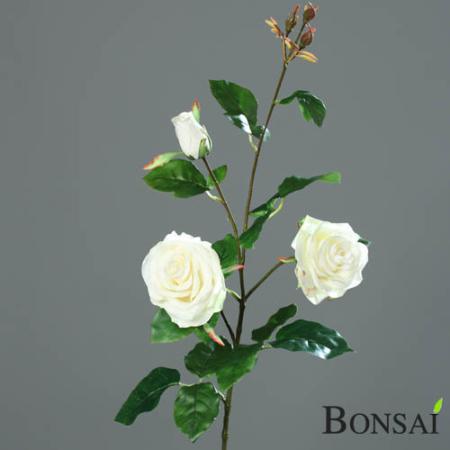 Vrtnica veja 2 cvetna 90cm