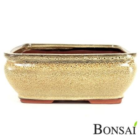 Bonsai posoda 21x18x9