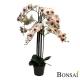 Orhideja belo- roza aranžma RT 110 cm