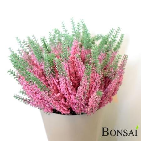 Erika grmiček roza 29cm - Resa | AKCIJA 60% POPUST