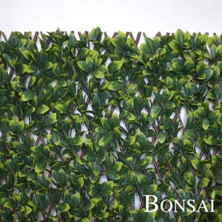 Zelena stena premična 135 cm UV Lovorikovec - raztegljivo