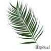 palmina-veja-100-cm-zelena
